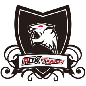 ROX tigers contracts expire, Team Disbands
