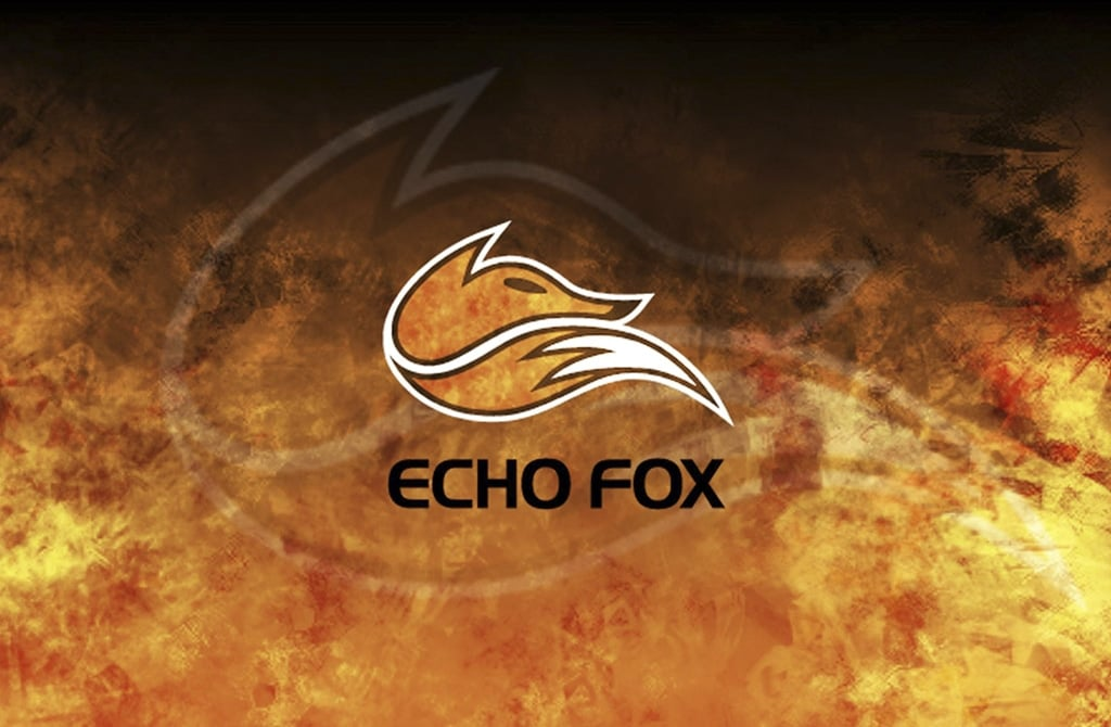 Echo fox release statement on poaching allegations
