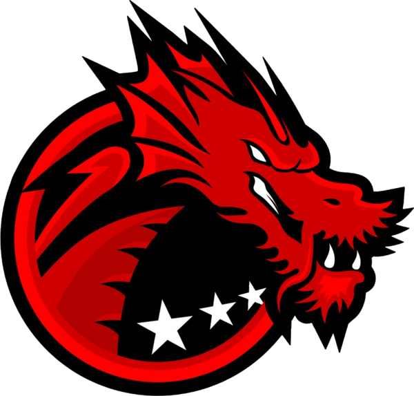 Ination players to play under Binary Dragons title