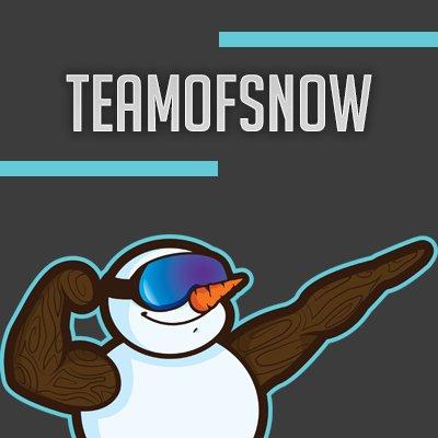 Teamofsnow announces their overwatch team.