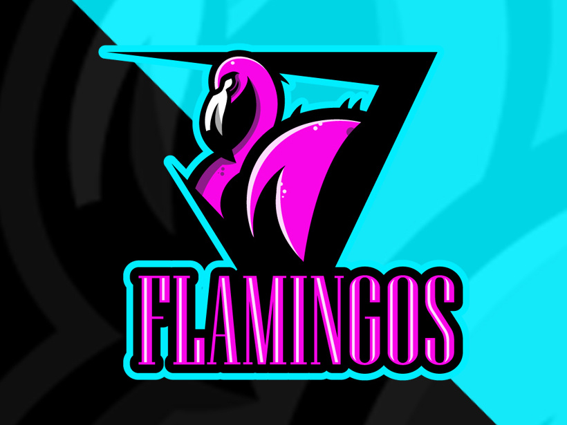 Team Flamengo Management taken over by Simplicity Esports